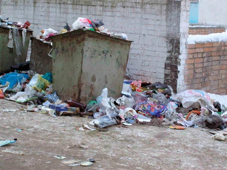 В Кривом Роге  дети страдают из-за открытых мусорных контейнеров