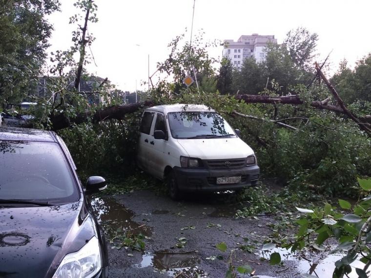 Ущерб от урагана в Амуре составил более 4 миллионов рублей #Экономика #Омск