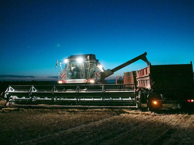 Омские аграрии намолотили 2 миллиона тонн зерна #Экономика #Омск