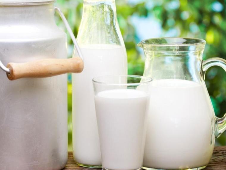 МинсельхозРФ отобрал 12 регионов для проведения молочных интервенций