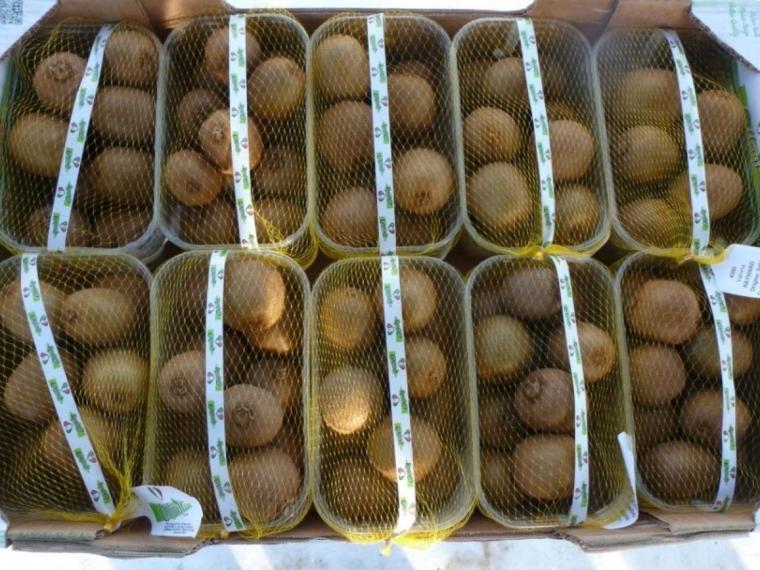 ВОмске раздавили 3 тонны санкционных киви изИталии