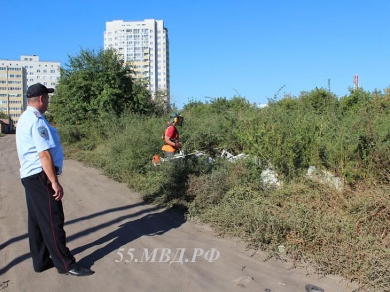 В15 районах Омской области на100% избавились отконопли