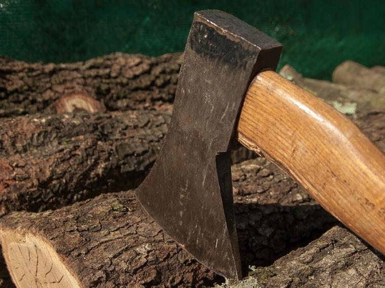Чиновник вОконешниковском районе заставил осуждённого наколоть дрова по-хитрому