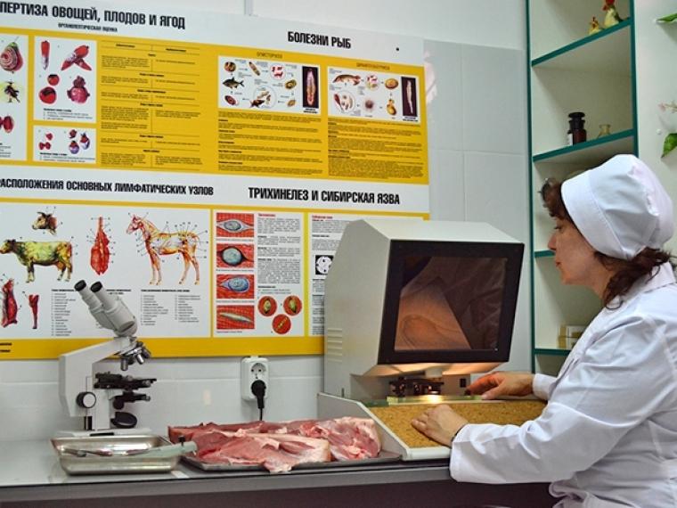 В личном  хозяйстве воВладимирской области найден  вирус АЧС