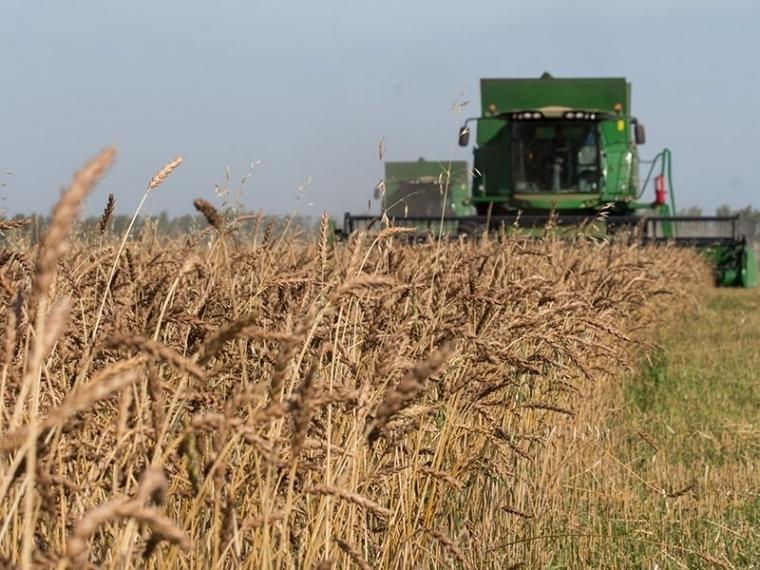 Объединенная зерновая компания поможет омским аграриям выйти на рынки Азиатско-Тихоокеанского региона