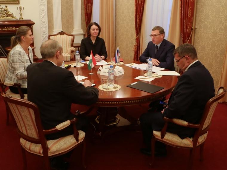 Александр Бурков предложил Венгрии укрепить отношения сОмской областью