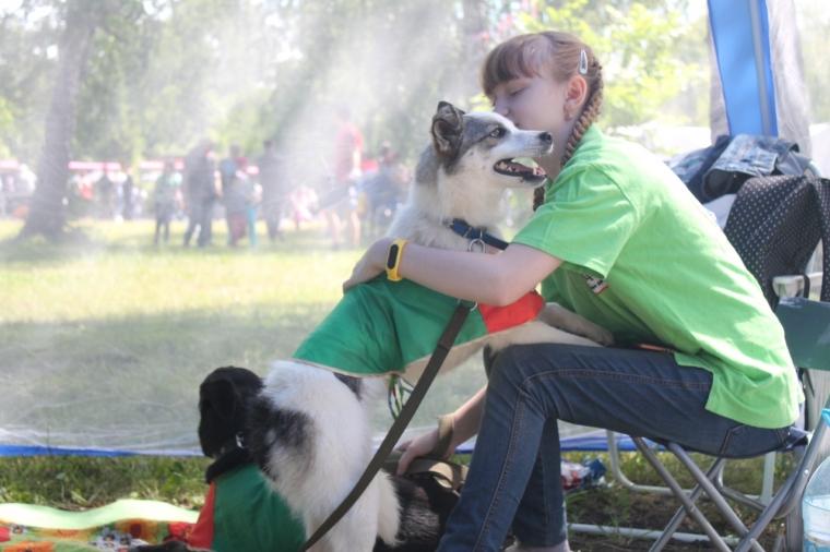 Омский приют для собак «Друг» приглашает на свой День рождения